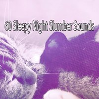 60 Sleepy Night Slumber Sounds — Smart Baby Lullaby