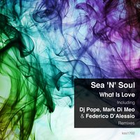 What is Love — Mark Di Meo, DJ Pope, Federico D'Alessio, Sea 'N' Soul
