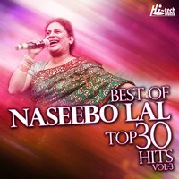 Best Of Naseebo Lal Top 30 Hits, Vol. 3 — Naseebo Lal