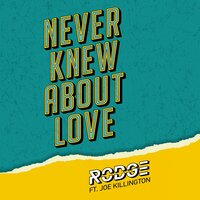 Never Knew About Love — Rodge, Joe Killington