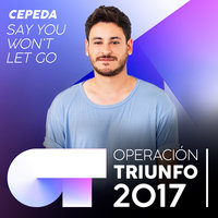 Say You Won't Let Go — Cepeda
