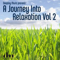 A Journey into Relaxation, Vol 2 — сборник