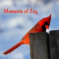 Moments of Joy — сборник