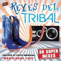 "Reyes del Tribal ""30 Super Mixes"" — сборник"