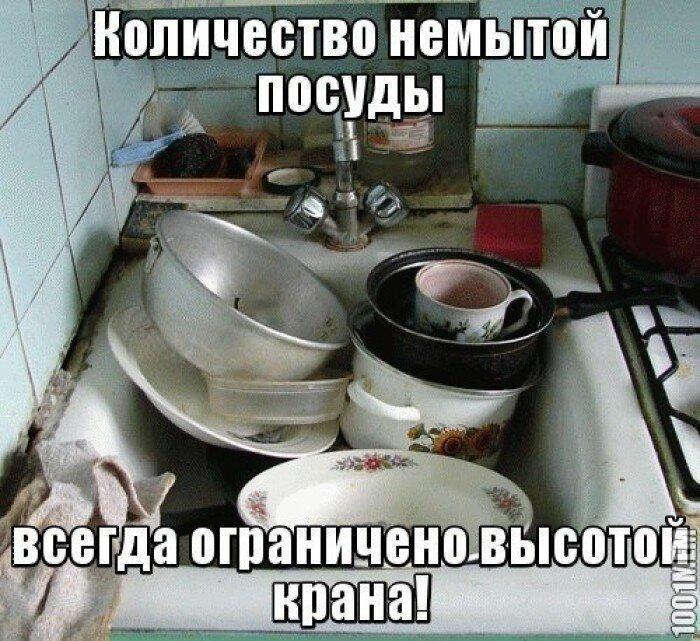значение гора посуды картинки смешные запросу рассадопосадочная для